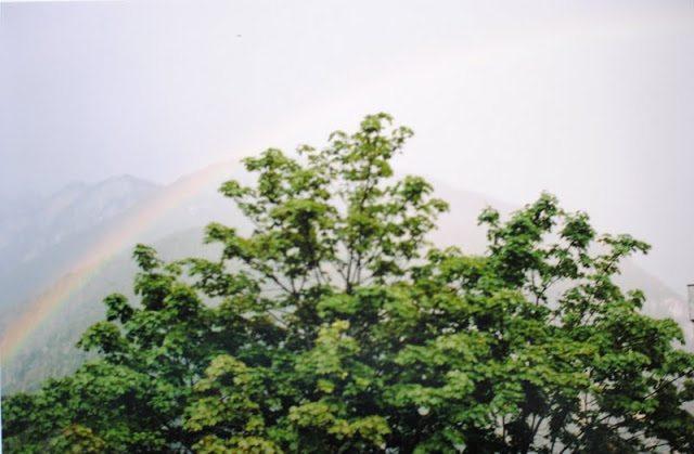 DSC0639 Rainbow