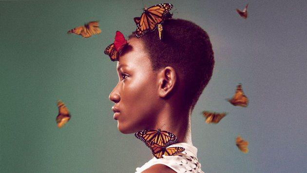 2012-SS-11 Butterflies