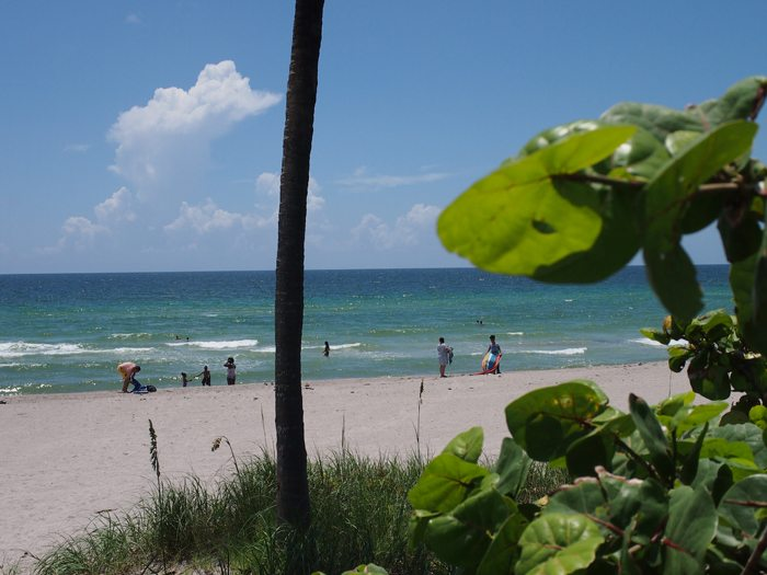 P7121068 Miami Beach