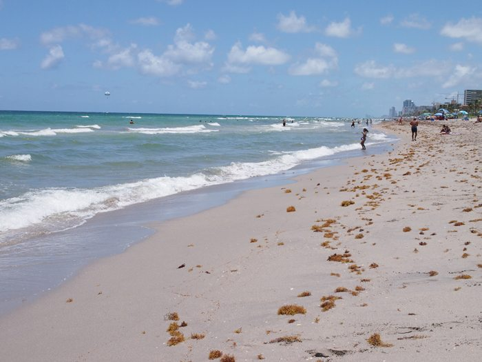 P7121102 Miami Beach