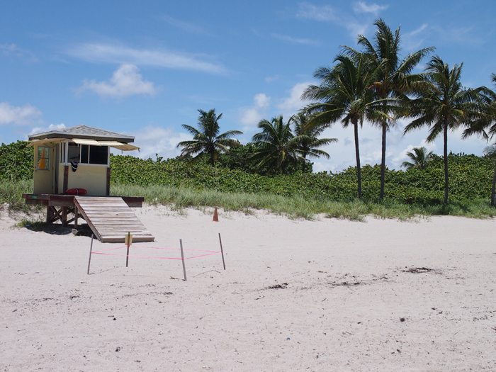 P7121107 Miami Beach