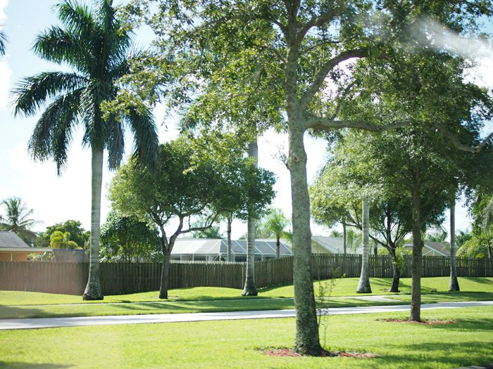 P7161409 Key Biscayne and Key West