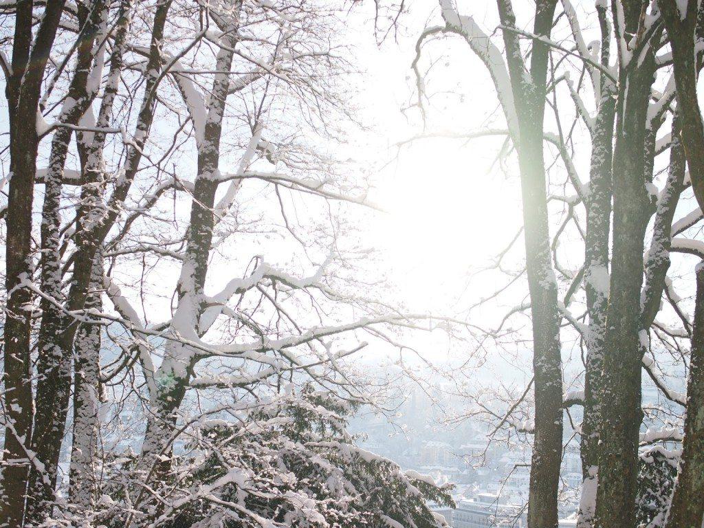 P1285963-1024x768 Galactic Snow