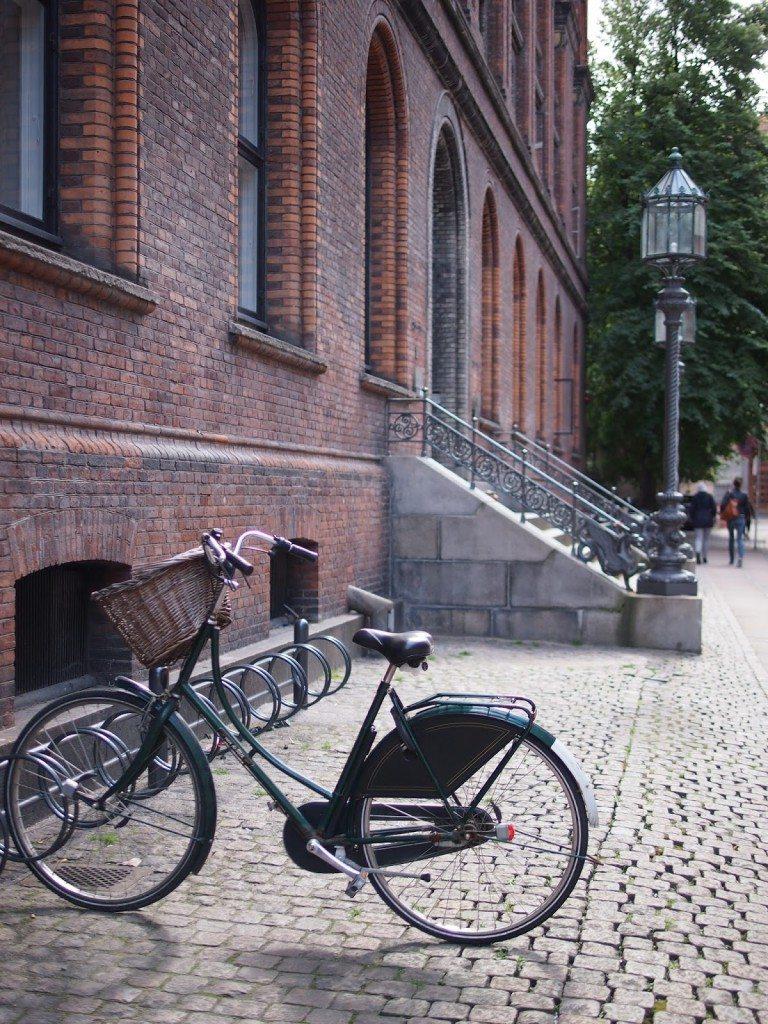 P1018990-768x1024 Copenhagen II