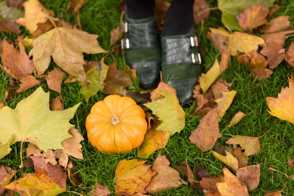 DSC_1229k-1024x683 Outfit: Pumpkin Season